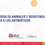 EXHORTO | Cría intensiva de animales y resistencia bacteriana a los antibióticos