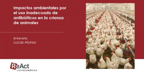 Impactos ambientales por el uso inadecuado de antibióticos en la crianza de animales