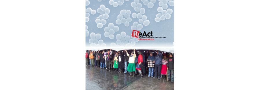 ReAct Latinoamérica. Informe 2012